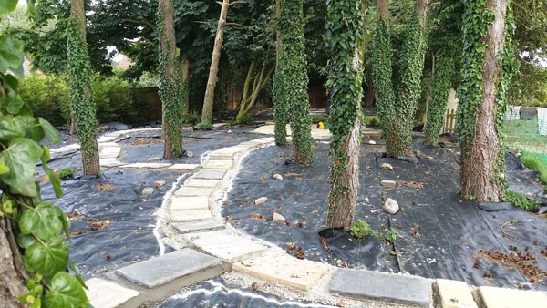 Landscaping-work-in-Cromer-5